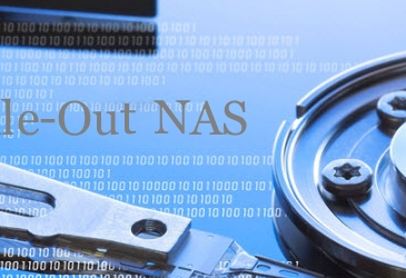 NAS Scale out Systems